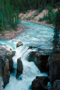 Sunwapta Falls Alberta